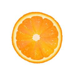 orange slice with white background vector image