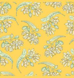Tilia flowers-02 vector
