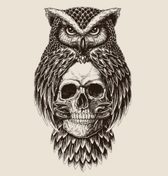 elaborate drawing of owl holding skull vector image vector image