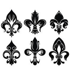 set of royal lily vector image