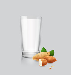 almond nuts and dinking glass of almond milk vector image