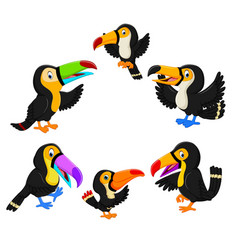 collection of black toucan vector image