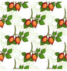 Dog-rose seamless pattern vector