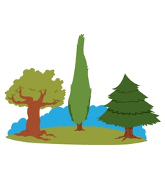 group of trees vector image