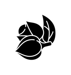 Guarana black glyph icon vector