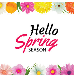 Hello spring season greeting card with colorful vector