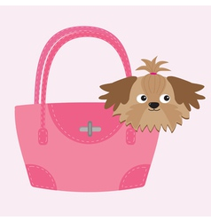 Little glamour tan Shih Tzu dog in the pink bag vector image