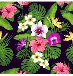 Tropic orchid dark vector