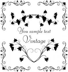 illustration the grape twig ornate vector image