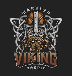 Viking colorful vintage design vector