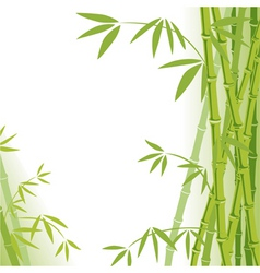 background bamboo vector image vector image