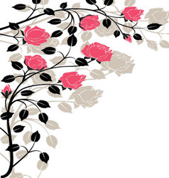 Flourishes-in-black-and-pink vector image