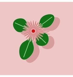 paper sticker on stylish background plant Bellis vector image