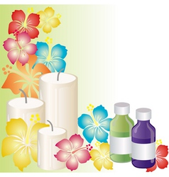 aromatherapy vector image