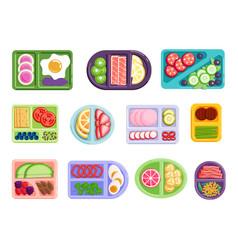 Balanced nourishment dividing sandwiches vector