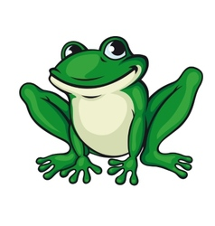 Big green frog vector image