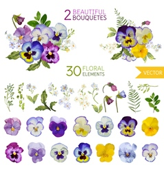 Vintage Pansy Flowers and Leaves vector image
