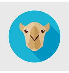 Camel flat icon Animal head symbol vector image