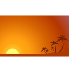 Silhouette of palm lined at sunset vector