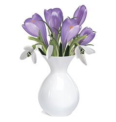 Bouquet of crocuses and snowdrops vector image