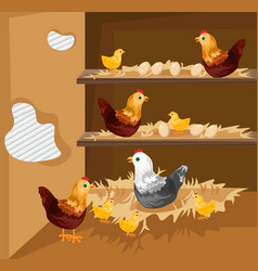 chicken nesting in a coop ecological free vector image