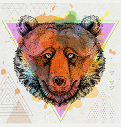 hipster animal bear on artistic polygon background vector image