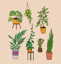 Home plants cartoon style vector