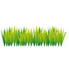 lime green grass with leaves icon vector image