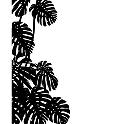 Tropical leaf background vector image vector image