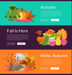 cartoon autumn elements and leaves web vector image