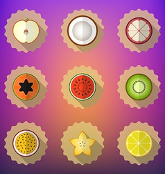 Fruit Flat Icon Set Include apple lemon papaya vector image