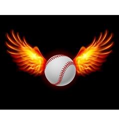 Baseball fiery wings vector image vector image