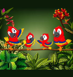 Beautiful parrots perch on trunk together vector