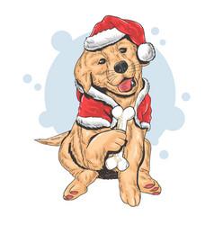 christmas cute puppy santa claus vector image