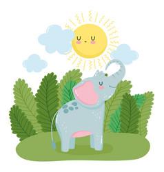 little elephant sun grass leaves nature wild vector image