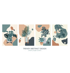 Set four covers templates indoor plants vector