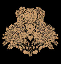 set hand drawn unique deer surreal moth vector image