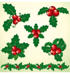 holly decoration vector image