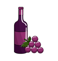 bottle of wine and grape fruit tasty vector image vector image