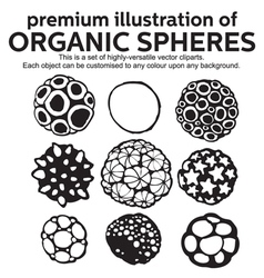 Organic Spheres vector image vector image