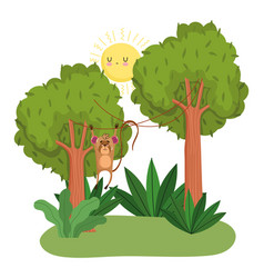cute monkey hanging trees forest nature wild vector image