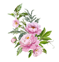Peonies with grass vector