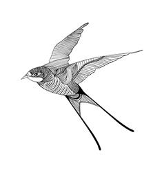 Zentangle stylized swallow Hand Drawn Sketch for vector image vector image