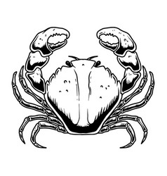 crab in engraving style isolated on white vector image