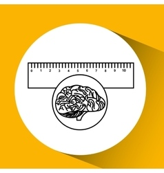 Plastic ruler brain school knowledge vector