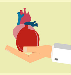 doctors hand hold human heart healthcare concept vector image vector image