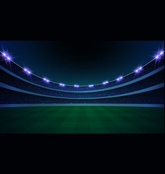 Stadium with illumination vector