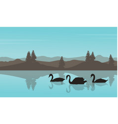 Swan landscape silhouettes vector