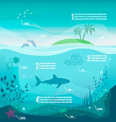 Underwater infographics vector
