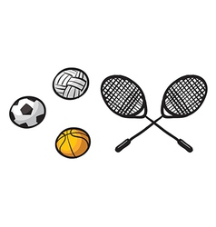 Various balls and rackets vector